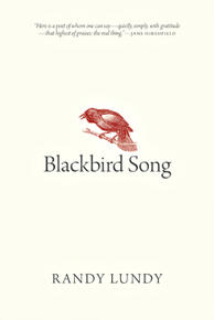 Blackbird Song small cover